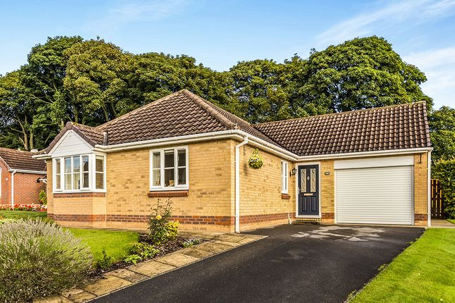 Thumbnail Bungalow to rent in Graythwaite, Chester Le Street