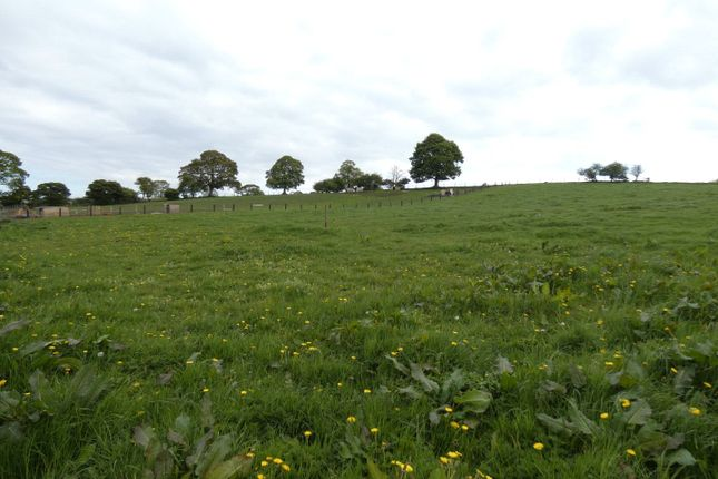 Picture No. 01 of Land At Trimdon, Salters Lane, Trimdon, Trimdon Station TS29