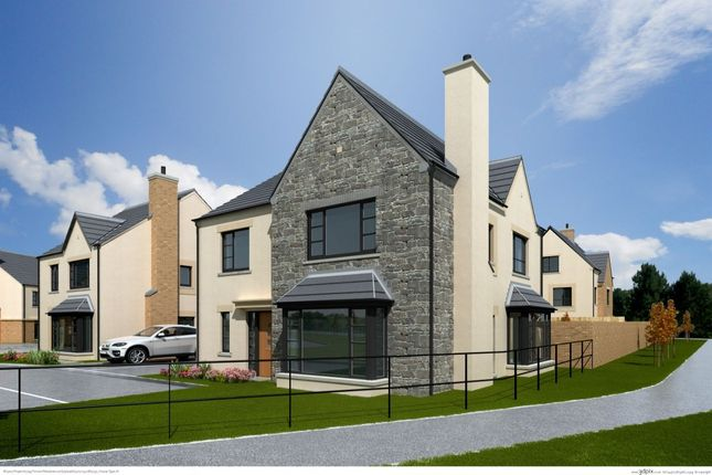 Thumbnail Detached house for sale in The Orchid, Ferrard Meadow, Antrim