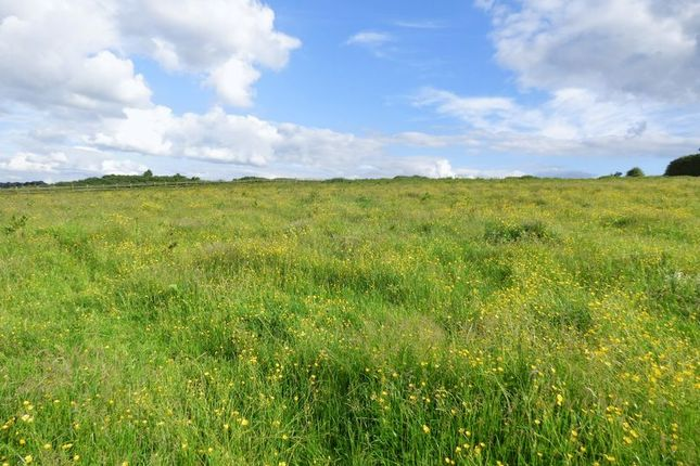 Thumbnail Land for sale in Harper Hill, Wingerworth, Chesterfield