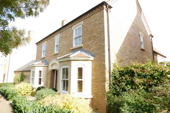 Thumbnail Detached house for sale in Bronte Avenue, Stotfold, Hitchin, Herts