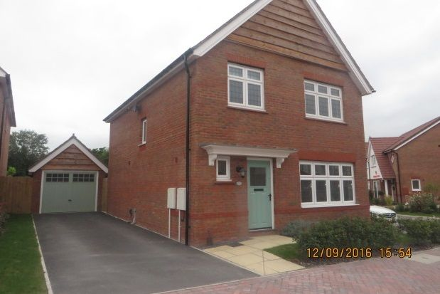 Thumbnail Property to rent in Camomile Way, Newton Abbot
