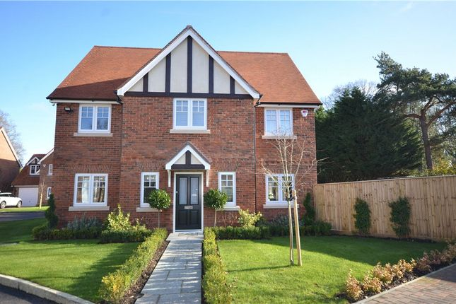 Thumbnail Detached house for sale in Oak Apples, Elgar Avenue, Crowthorne