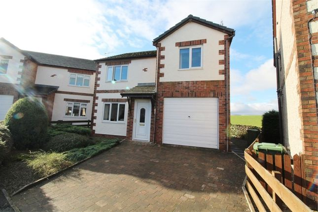 Thumbnail Detached house for sale in Green Croft, Shap, Penrith, Cumbria