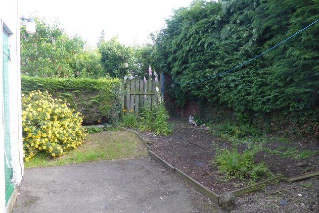 Church View, Great Langton - Garden