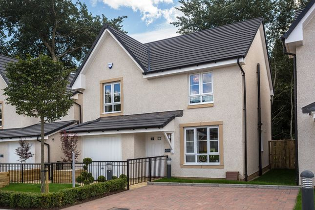 "Thumbnail Detached house for sale in ""Rothesay"" at Rowan Street, Wishaw"