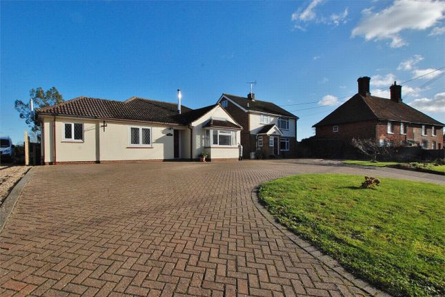 Thumbnail Detached bungalow for sale in Chappel Road, Great Tey, Essex