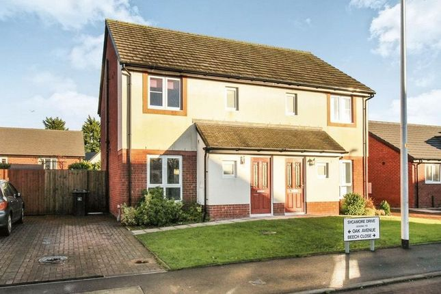 Thumbnail Property to rent in Sycamore Drive, Longtown, Carlisle