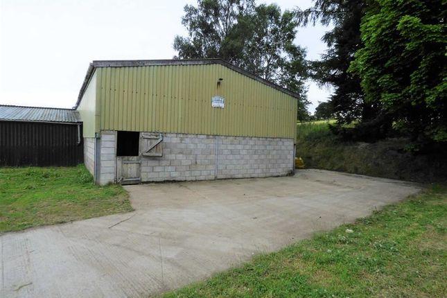 Thumbnail Land to rent in Llandegla, Wrexham