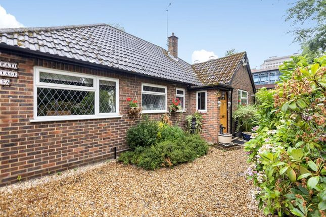 Thumbnail Detached bungalow for sale in Horsell, Woking