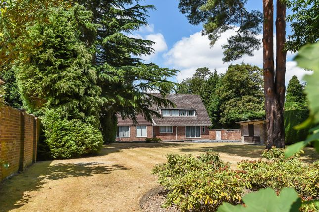 Thumbnail Detached house for sale in East Road, St. Georges Hill, Weybridge