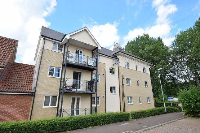 Thumbnail Flat for sale in Summerfields, Sible Hedingham, Halstead
