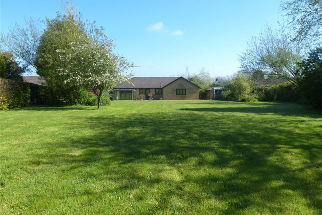 Thumbnail Detached bungalow for sale in Fresh Fields, Cold Blow, Narberth, Pembrokeshire
