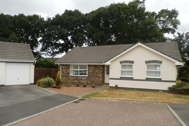Thumbnail Detached bungalow to rent in Primrose Gardens, Tavistock