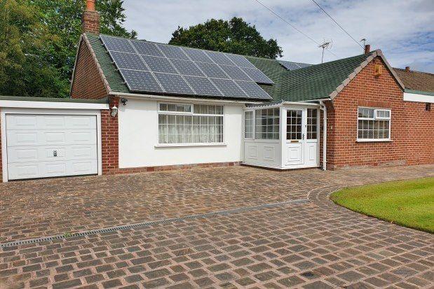 Thumbnail Detached bungalow to rent in Birchall Avenue, Warrington