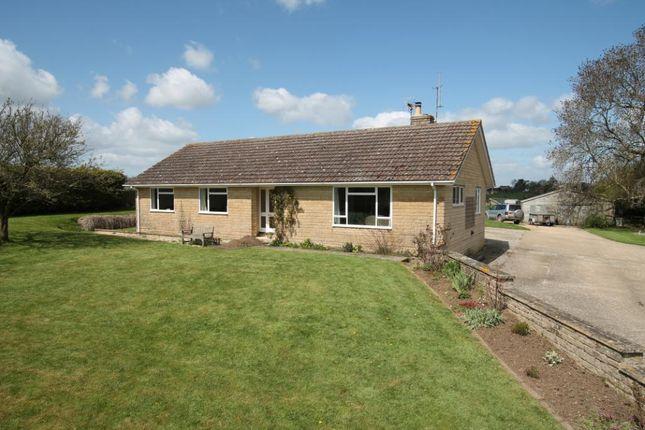 Thumbnail Bungalow to rent in Fifehead St. Quintin, Sturminster Newton, Dorset