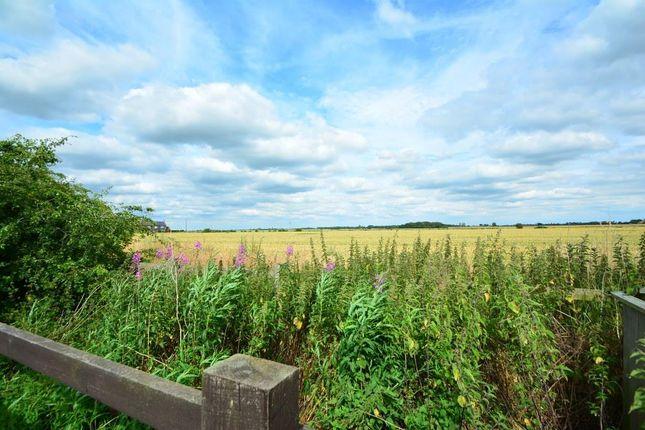 Views of Verde Close, Eye, Peterborough PE6