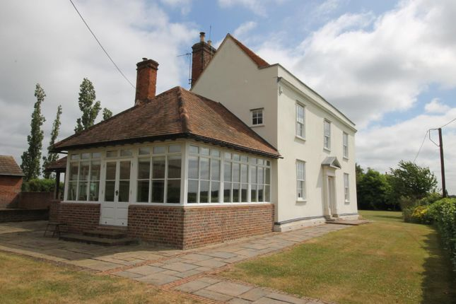Thumbnail Detached house to rent in Fordham, Colchester, Essex
