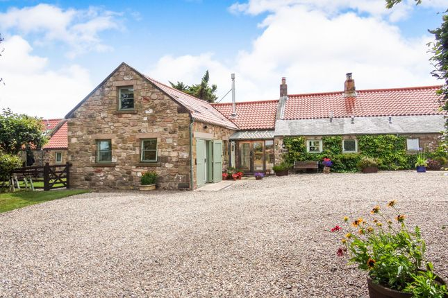 Thumbnail Barn conversion for sale in Chatton, Alnwick