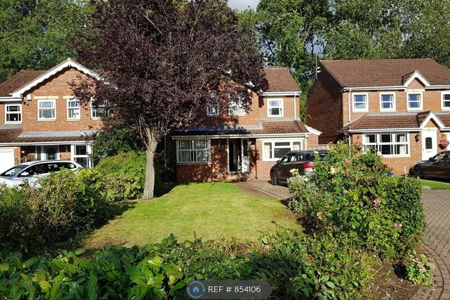Thumbnail Detached house to rent in Pavilion Gardens, Scunthorpe