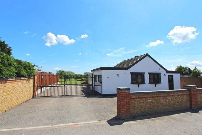Thumbnail Bungalow for sale in Honiley Avenue, Wickford