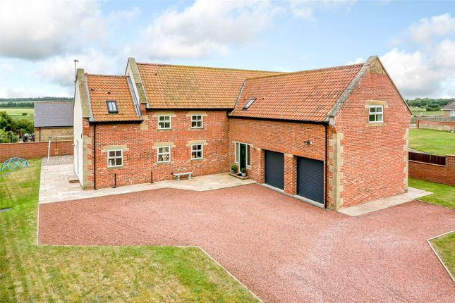 Thumbnail Detached house to rent in Tritlington, Morpeth, Northumberland