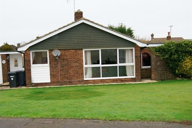 Thumbnail Detached bungalow to rent in Meadows Road, Eastbourne, East Sussex