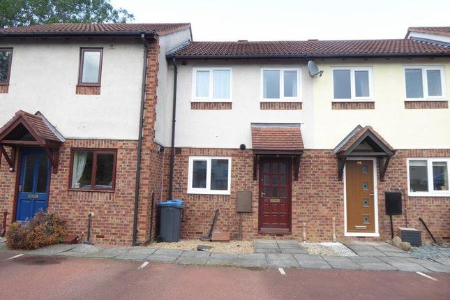 Thumbnail Semi-detached house to rent in Dexta Way, Northallerton
