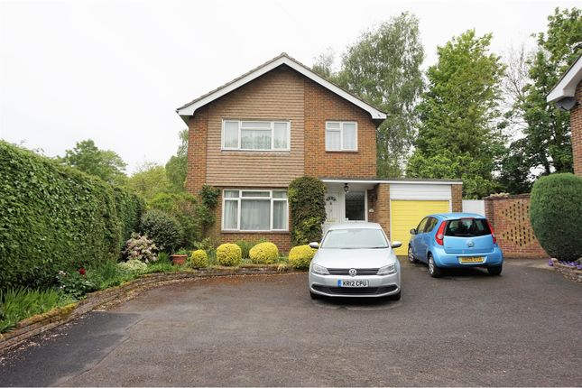 Thumbnail Detached house for sale in The Mead, Petersfield