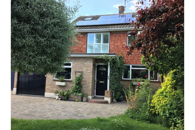 Thumbnail Detached house for sale in Millfields, Chelmsford