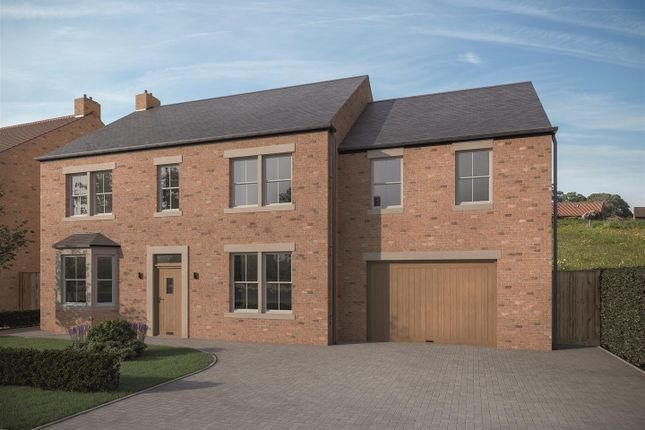 Thumbnail Detached house for sale in Lowfields Lane, Pickhill, Thirsk