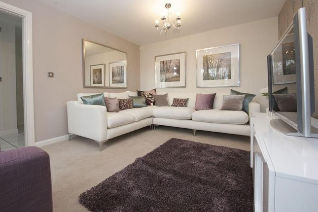 """4 bedroom detached house for sale in """"Rothbury"""" at Livingstone Road, Corby"""