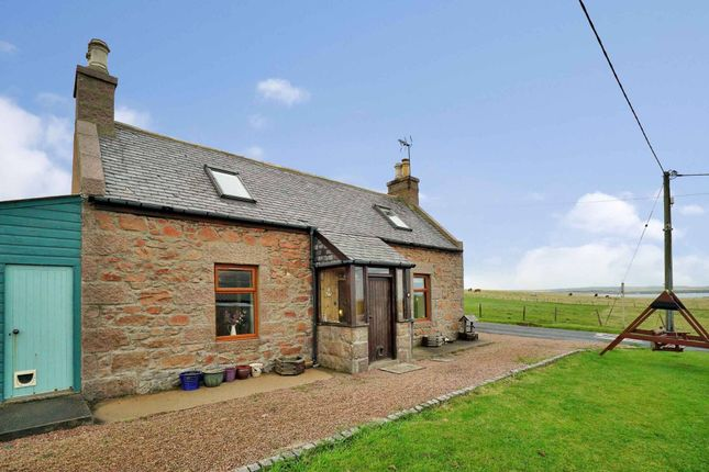 Thumbnail Cottage for sale in Whinnyfold, Cruden Bay, Peterhead, Aberdeenshire