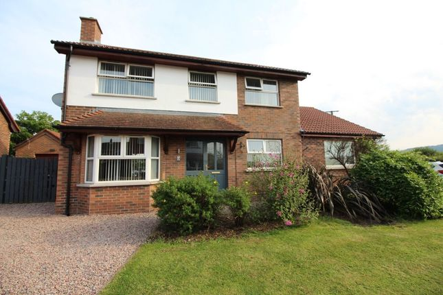 Thumbnail Detached house for sale in Island Dale, Whitehead