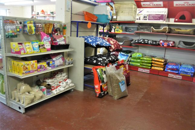 Photo 1 of Pets, Supplies & Services BD12, Wyke, West Yorkshire
