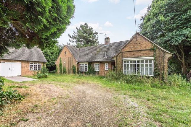 Thumbnail Bungalow for sale in Hanney Road, Southmoor, Abingdon