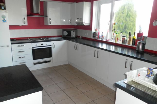 Thumbnail Terraced house to rent in Wood Road, Treforest