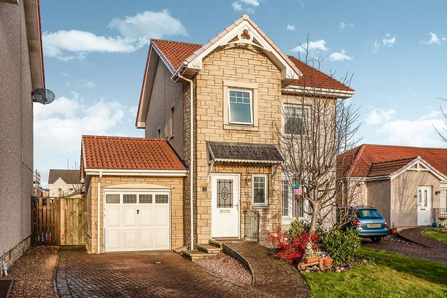 Thumbnail Detached house for sale in Teal Place, Montrose
