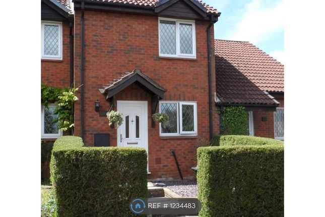 Thumbnail Terraced house to rent in Warblington Close, Chandlers Ford