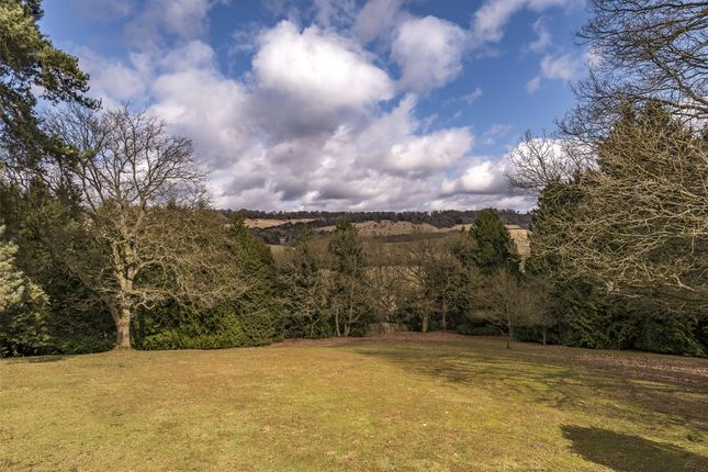Thumbnail Bungalow for sale in Reigate Road, Dorking, Surrey