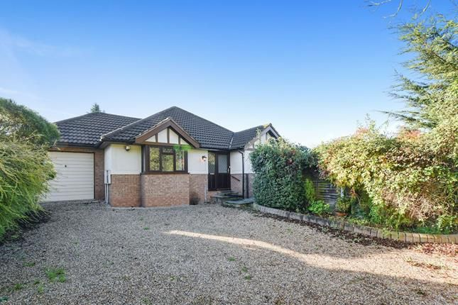 Thumbnail Bungalow for sale in Spital Lane, Brentwood, Essex