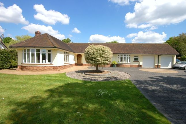 Thumbnail Bungalow for sale in Church Road, Windlesham