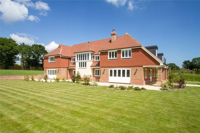 Thumbnail Detached house for sale in Brooks Green, Horsham, West Sussex