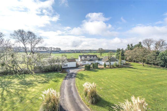 Thumbnail Land for sale in Lower Buryhill Farm, Braydon