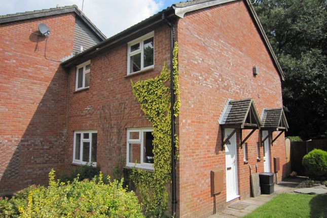 Thumbnail Property to rent in Priory Close, Alderbury, Salisbury