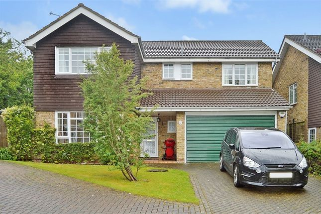 Thumbnail Detached house to rent in The Sycamores, Bishop's Stortford, Hertfordshire