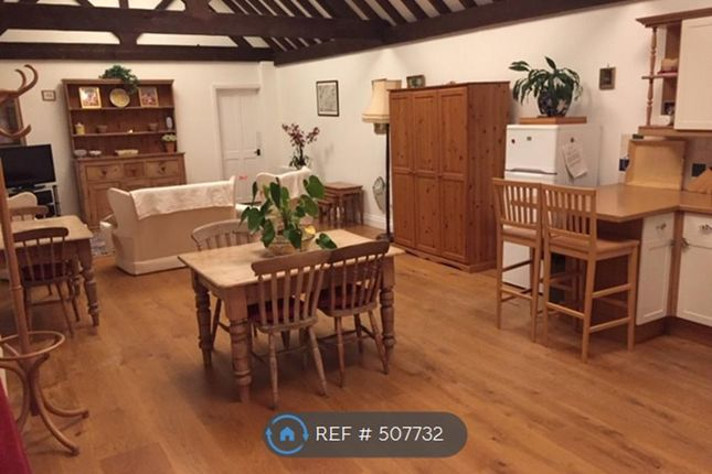 Thumbnail Bungalow to rent in The Drift, Bentley, Farnham