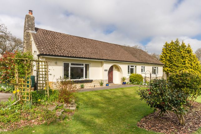 Thumbnail Detached bungalow for sale in Ashley, Ringwood, Hampshire