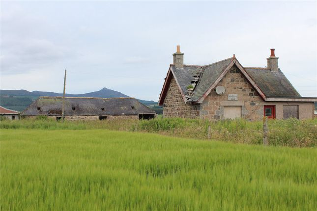 Thumbnail Land for sale in Upper Coullie Lot 1, Blairdaff, Inverurie, Aberdeenshire
