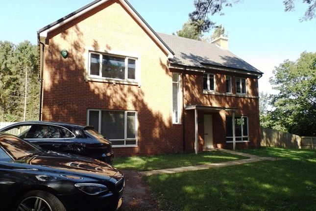 Thumbnail Detached house to rent in Eden, St. Mary Park, Morpeth
